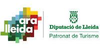 ara_lleida_diputacio_100